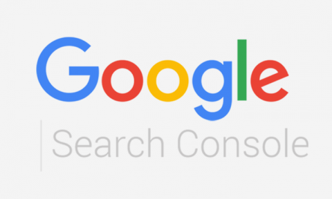 Google Search Console started to support micro-markup for licensed images