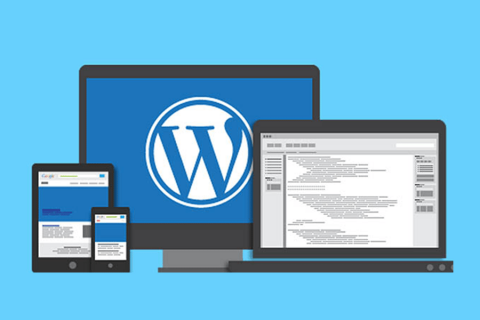 What Is WordPress? Overview Of The Most Popular CMS